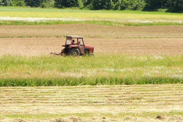 Traktor (slika je simbolna).